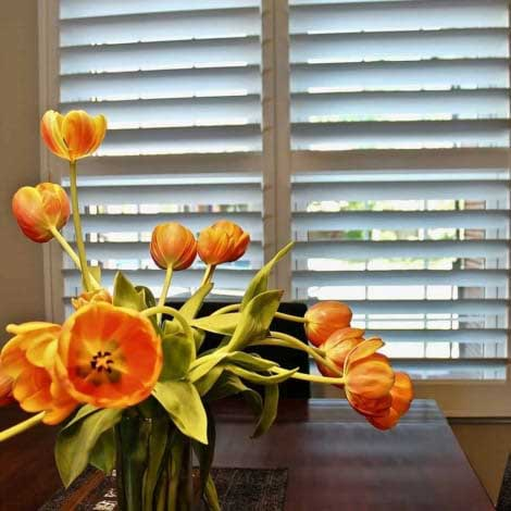 window treatments photo gallery